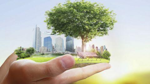 Master Gestión Integrada los Sistemas de Calidad Medioambiente y PRL