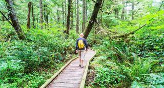 Máster en restauración de espacios naturales y biodiversidad