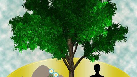 Máster en Dirección de Recursos Humanos + Máster en Coaching, Gestión Emocional y Mindfulness